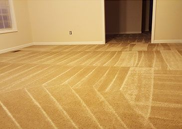 After picture of carpet cleaning service